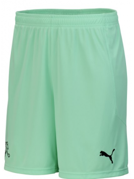Puma Schweiz Goalkeeper Short 2019/20 Kinder
